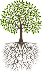 Rooted in Jesus Tree Logo