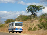 Transport in Mfuwe